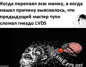 vRdq225Rino
